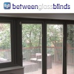 BetweenGlassBlinds